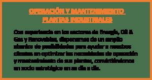 Puesta en Marcha de Plantas Industriales 3